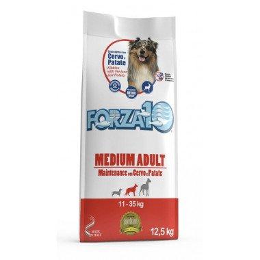Gheda-Dog_Dog-wild-regional-Grassland-chien-adulte-2kg